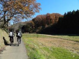 東京里山サイクリング(1月)