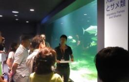 京都大学白浜水族館 研究者と飼育係のこだわり解説ツアー