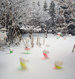 Snow Pallet 9 / 第7期六花ファイル作家:澁谷俊彦展