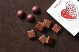 ヨコハマ チョコレート パラダイス
