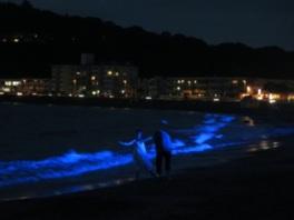 NIGHT WAVE~光の波プロジェクト~