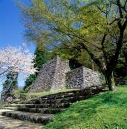 【桜・見ごろ】人吉城跡 村山公園