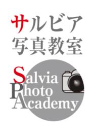 サルビア写真教室