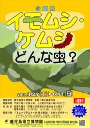企画展「イモムシ・ケムシ、 どんな虫?」