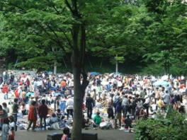 新宿中央公園ビッグフリーマーケット