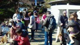 川崎市・生田緑地フリーマーケット(4月)