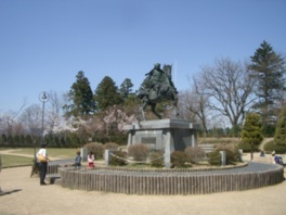 【桜・見ごろ】高山市 城山公園