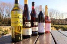 リトルワールド「オージーワイン&ミートフェス」