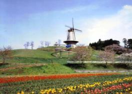 長沼フートピア公園の桜&チューリップの鑑賞