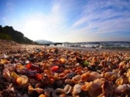 海からのおくり物 ビーチコーミング