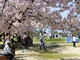 第18回広島市森林公園杯 グラウンドゴルフ大会