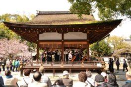 第16回平野神社桜コンサート