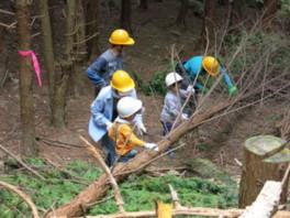 県立なか・やちよの森公園 森を育てよう!シリーズ1回目 親子で間伐体験にチャレンジ!