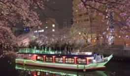 横浜・大岡川 乗合屋形船 お花見ディナークルーズ