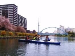 春のお花見 カヤック ツーリング 季節限定・お出かけカヌーツアー