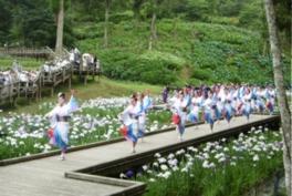 第13回西の久保公園天草花しょうぶ祭り&食と物産大バザール