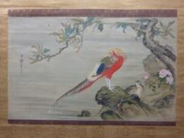 春季企画展「繊細に描かれた鳥たち」