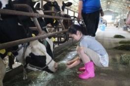 牛さんの飼育係(4月)