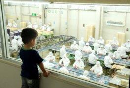 お菓子と食の桔梗信玄餅工場テーマパーク