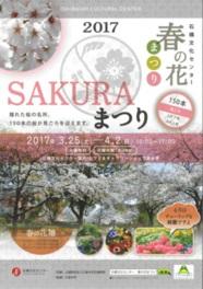 石橋文化センター春の花まつり2017 SAKURAまつり