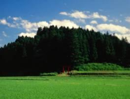 坪沼八幡神社例大祭