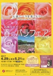 石橋文化センター 春のバラフェア 2017