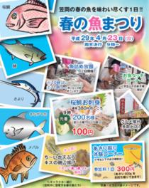 春の魚まつり