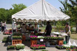 花と緑を満喫できる春のフローラルフェスタ