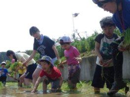 ヤックス自然学校「わんぱくコース:田植え&森あそび」