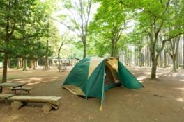 子供から大人まで楽しめる合宿所+キャンプ場