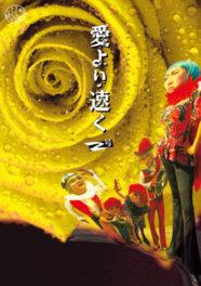 劇団どくんご全国ツアー「愛より速く 2号」松江公演