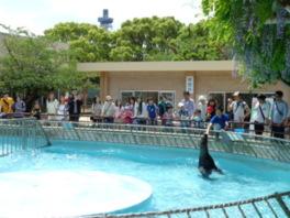 姫路市立動物園 ゴールデンウィークイベント