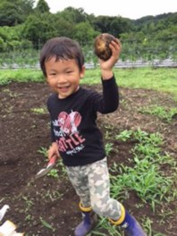 小野路の里山 夏野菜の収穫体験