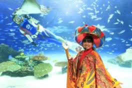 沖縄めんそーれフェスタ2017 水族館でめんそーれ
