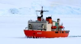 南極&北極展~真夏の玉川に氷と雪の世界がやってきた!~(仮称)