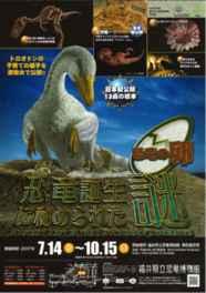 恐竜の卵や巣の化石を展示