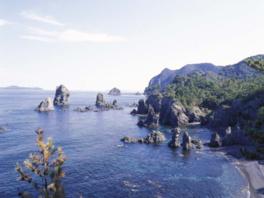 山口県立山口博物館地質めぐり「長門市青海島をたずねて」