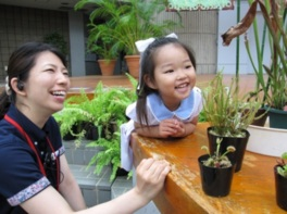 虫を食べる植物展