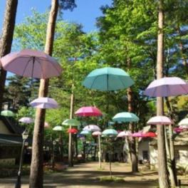信州塩尻農業公園 チロルの森deフォレストアンブレラ2017!!