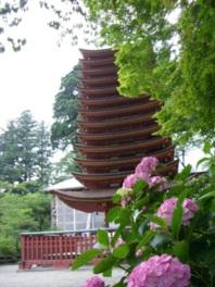 【あじさい・見ごろ】談山神社