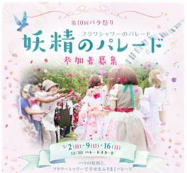 第10回 バラ祭り