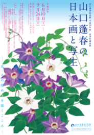 山口蓬春の日本画と写生-花・その煌めきを描くこころ-