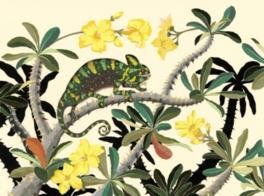 今森光彦 自然と暮らす切り紙の世界-里山のアトリエで生まれる命たち