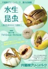 水生昆虫~水中生活のひみつを探る~