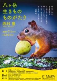 西村豊「青いクルミをくわえたニホンリス」2012年