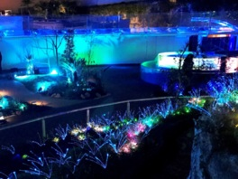 天空酒場inサンシャイン水族館