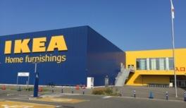 サステナマーケット IKEA福岡新宮(7月)