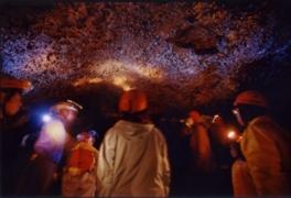 富士山洞くつ探検(7月)