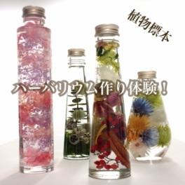 ハーバリウム(植物標本)体験@大阪の新世界のキャンドルショップ
