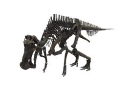 国立科学博物館・巡回ミュージアム in 長野 「恐竜たちがやってくる!」
